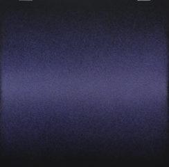 20180326195818-violet2