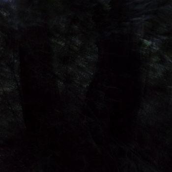 20180402193446-inka_juslin__black_tree__color_photography__2016