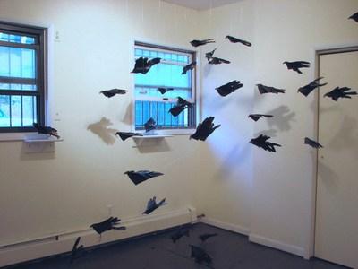 Nolan_glove-winged_blackbirds