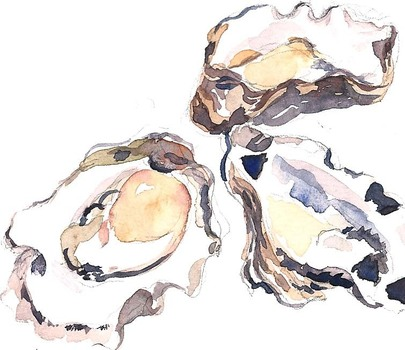 Oysters_closeup