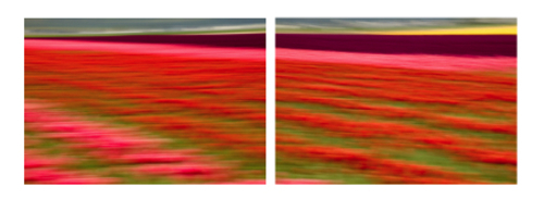 Passing_through_the_valley_diptych