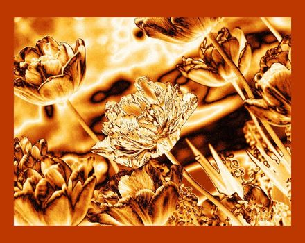 Metallic-gold-nature_latemay-june_2008hsa08_002