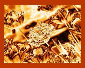 Metallic-gold-nature_latemay-june_2008hsa08_002