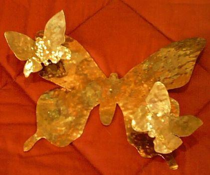 Butterfly005