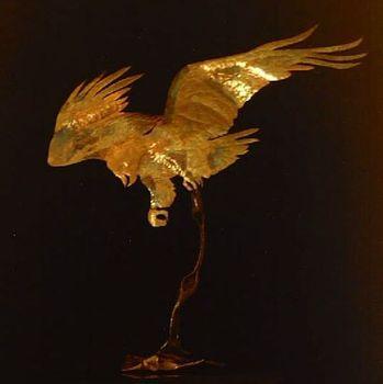 Eagle008