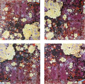 Liken_lichen_4_panels