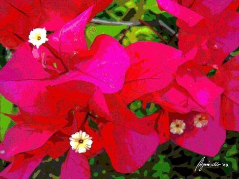 Flora_2_oil