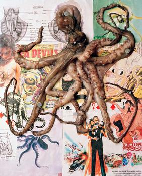 Octopod