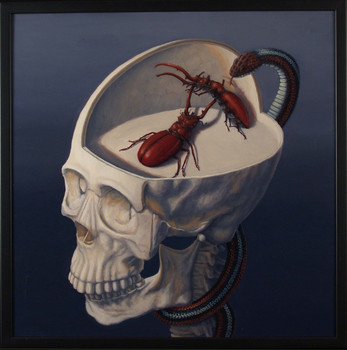 Beetlebrowskull