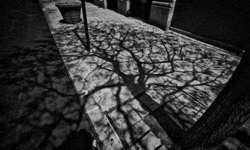 Shadow_light_web-10