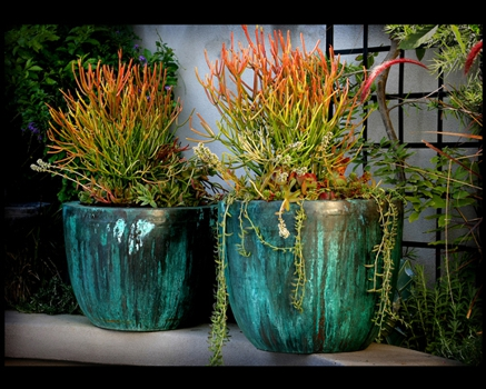 72dpi_patina_copper_planters