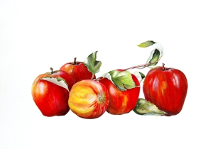 Mc_apples