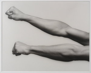 Mapplethorpe_arms