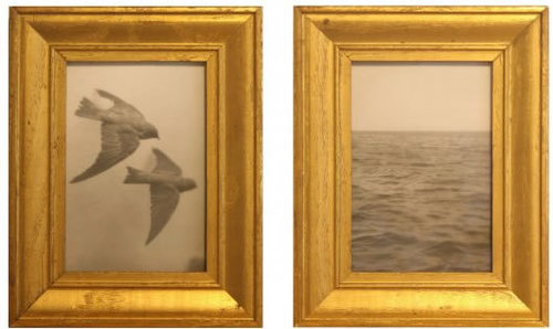 Jh11_-__10_000_nautical_miles__2008__pair_of_toned_silver_gelatin_prints___antique_frames