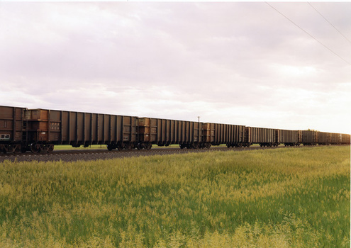 Vs-01-19_trainwithtallgrass