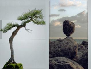 2009_06_nature_landscape
