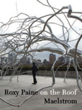 Roxy_paine_big