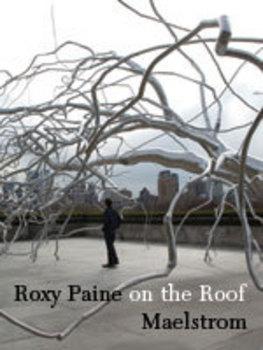 Roxy_paine_big