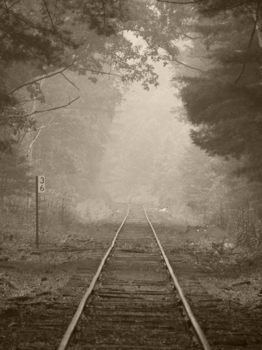 Tracks_jpg