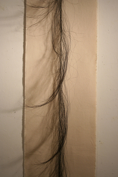 Hairline_detail4