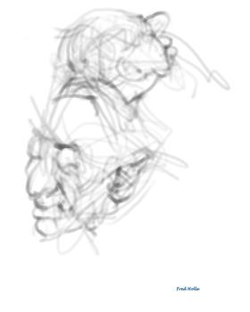 Faces_2-6_