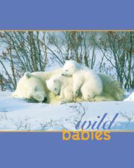 Wbabies_cover_web