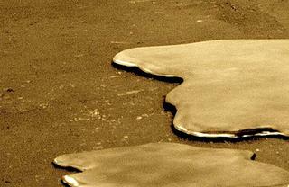 Gold-flood_crop_web