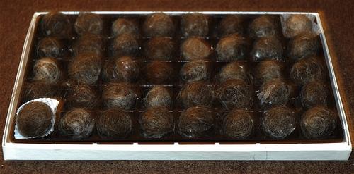 Hair_balls