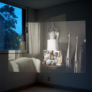 Augusta-wood-safari-room