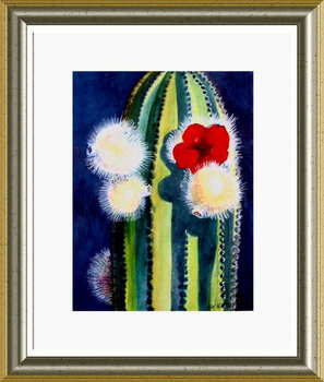 Organ_pipe_cactus_bloom_framed