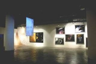 Gallerysoulflower