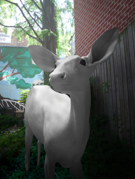 Deergarden_webphoto