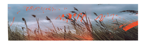 Sound_drawing_suffolk_coast_lesley_davy