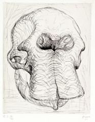 Moore_skull