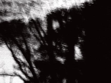 Tree_abstract_b_w