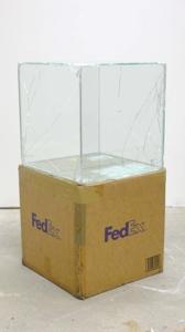 Fedex_cb_nomasm
