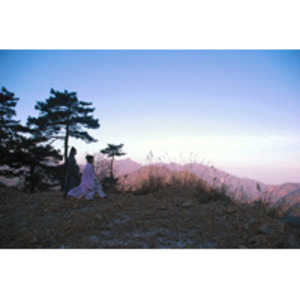 Large_upcoming2676_gao-shiqiang--beautiful-lovers--web-