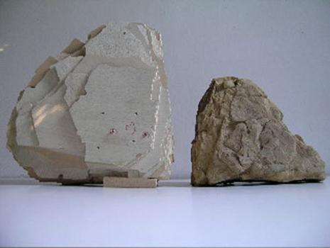 Ci_eccentric_boulder_2008