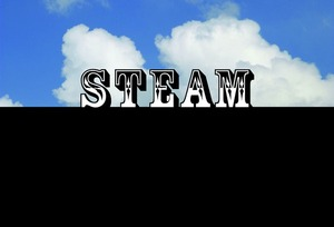 Steammiamicard