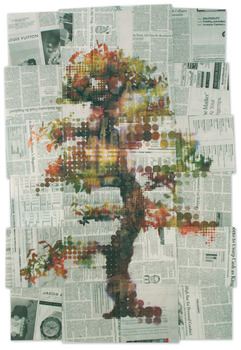Laburnum_2_-_36x24_-_mm_on_newspaper