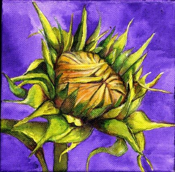 Sunflower_by_susan_lomino