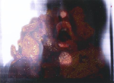 B3-aaronoldenburg_darwinscopymachine_installation_2005