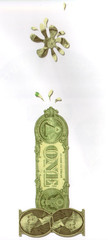 Moneyshot2_ryanbroughman