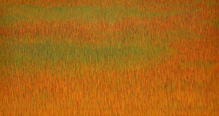 Obersunset_grassland_web_