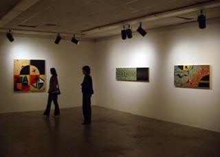 Drudis-biada-exhibit-16