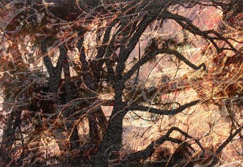 Tree_fantasy4