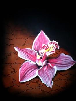 Utopija_orhideja