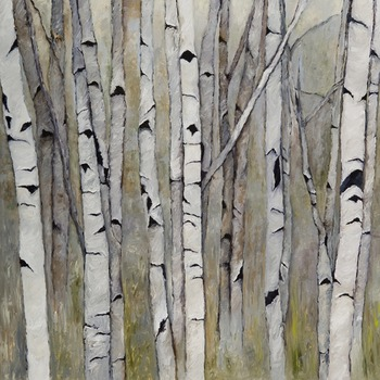 Birch___aspens