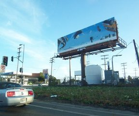 Matt_billboard_close