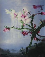 Peach_flower__3_
